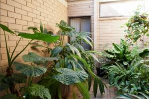 Hawdon House - Aged Care Find